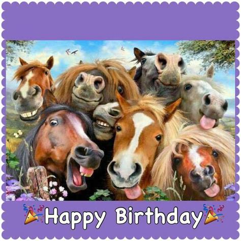 1000 images about horse party on pinterest horse feliz anivers 225 rio rsrs birthday pinterest