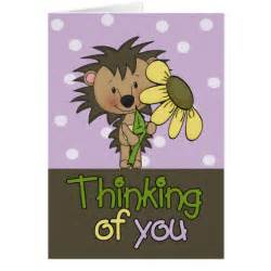 hedgehog thinking of you greeting card zazzle