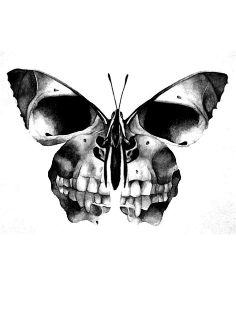 skull and butterfly tattoo scull butterfly tattoos skull butterfly
