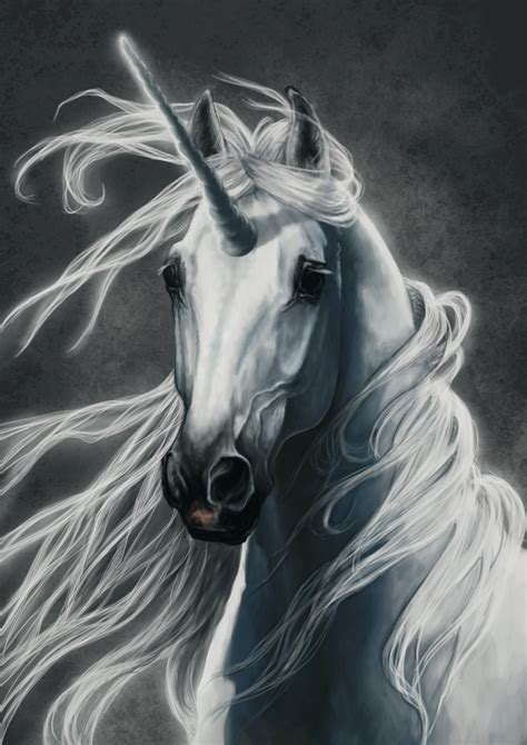 imagenes de unicornios berdaderos unicorn by nutlu on deviantart