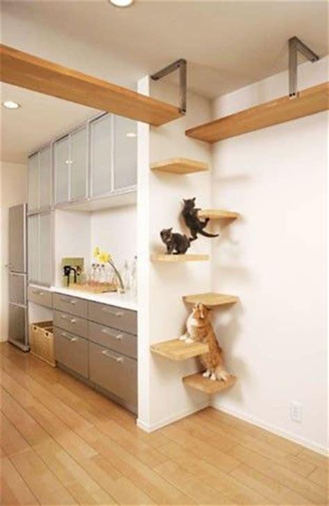 katzentreppe wohnung best 25 diy cat shelves ideas on cat wall