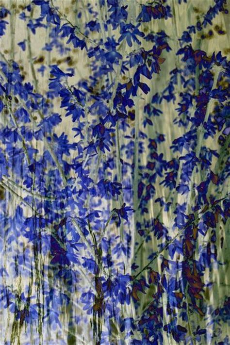 Dress Flower Blossom Set 1 5159 best floral print and patterns images on