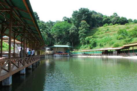 Pakan Ikan Lele Untuk Lomba spot mancing ikan daerah surabaya terbaru dan paling
