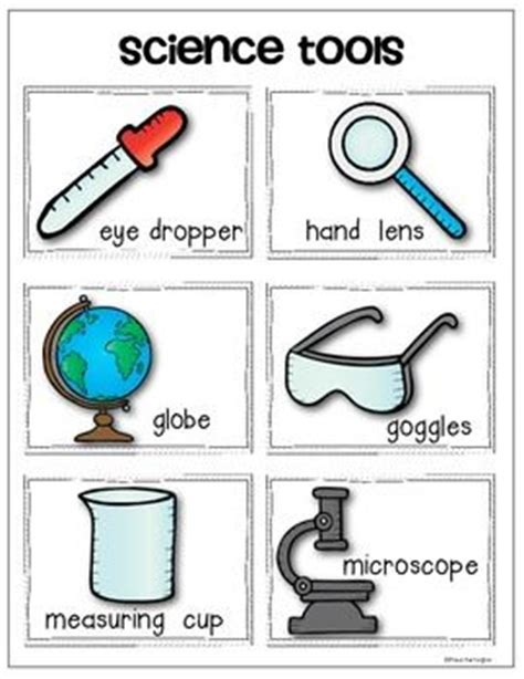 Science Tools Worksheet Kindergarten by 25 Best Ideas About Science Tools On Science