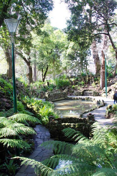 Botanical Gardens In Melbourne Royal Botanical Gardens Melbourne Melbourne Australia Fern