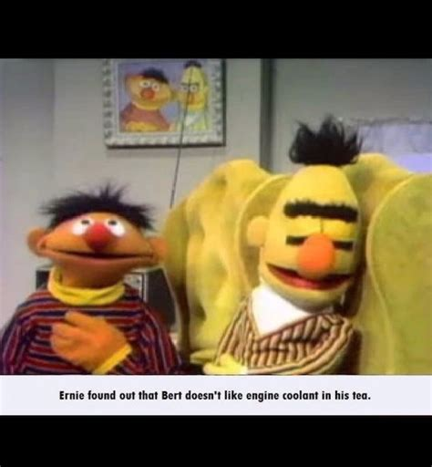 Dark Sesame Street Memes - 16 sesame street after dark memes that will completely ruin your childhood chaostrophic