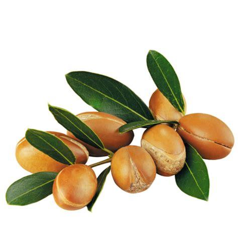 De Argan almacen holistico productos naturales aceite puro de arg 225 n