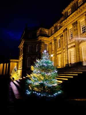 christmas tree appeal hopetoun