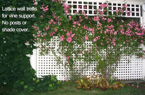 what is the meaning of trellis how to differentiate trellises arbors gazebos and pergolas