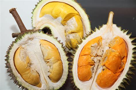 Kerupuk Bakso 5 Kilo posting dwi nugroho serba serbi makanan khas bangka belitung