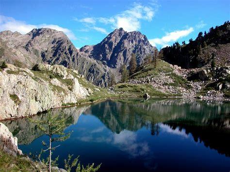 delle alpi marittime italian botanical heritage 187 parco naturale delle alpi