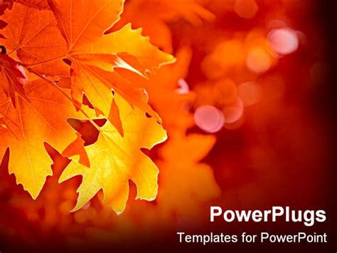 powerpoint template close up yellow leaf during fall 2360