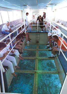 glass bottom boat west palm beach 25 best ideas about naples florida on pinterest orlando