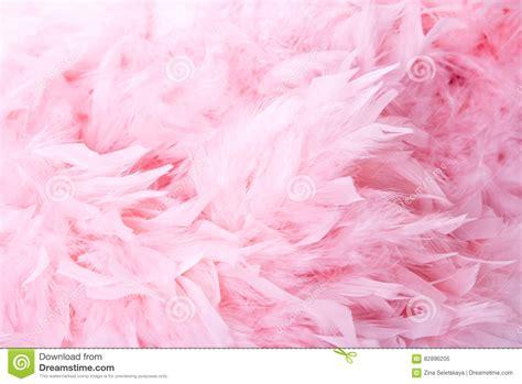 Beli 3 Gratis 1 Pink N Soft Pemerah Bibir Permanen fondo suave rosado de las plumas foto de archivo imagen 82896205
