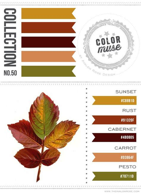 what color goes with rust best 25 rust color schemes ideas on teal