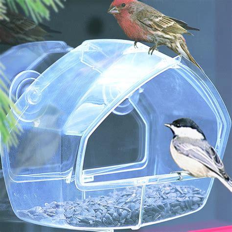 perky pet 348 window wild bird feeder amazon ca patio