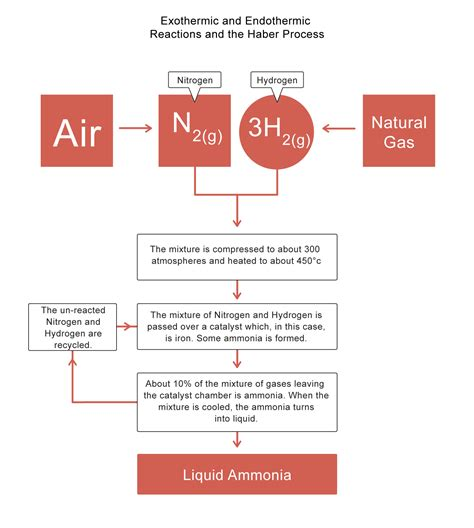 diagram of haber process exothermic and endothermic reactions worksheet quot quot sc quot 1