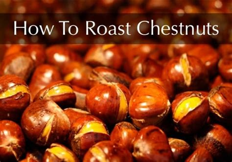 How To Roast Chestnuts   Homestead & Survival