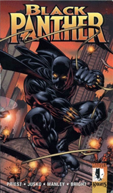 Intermix Blackbook by Black Panther Mixed Race Books Intermix Org Uk