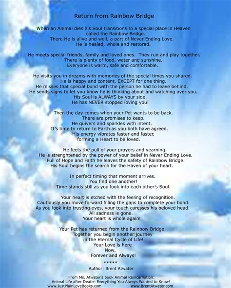 pets in heaven gift for owners rainbow bridge poem for pets l pet heaven l animal afterlife l rainbow bridge poem for animals l