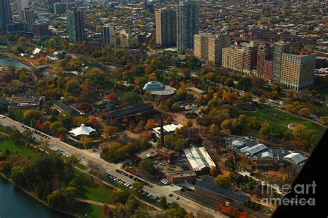 lincoln zoo park chicago chicago lincoln park zoo photograph by woolworth