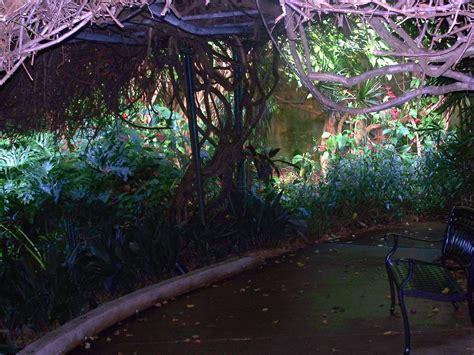 Sunken Gardens St Petersburg st petersburg fl sunken gardens photo picture image