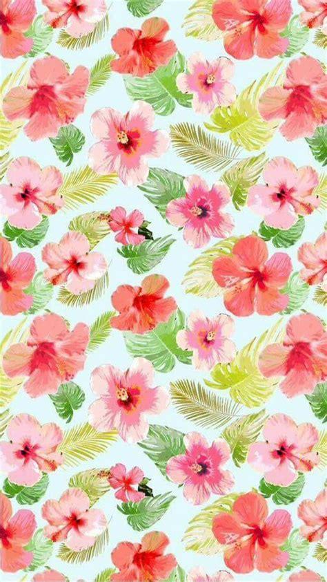imagenes flores pinterest image de flores fondo de pantalla and walpaper fondos