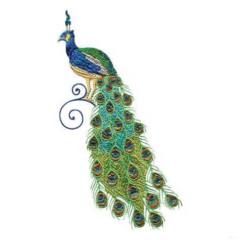 embroidery design of peacock swnpa140 peacock embroidery design