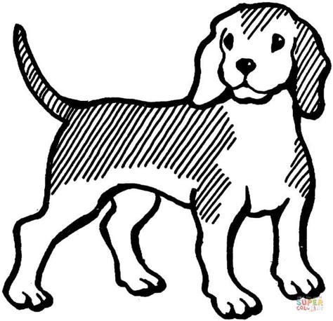 coloring pages of beagle puppies beagle coloring page free printable coloring pages
