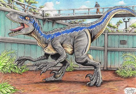 jurassic world blue by tadeu costa on deviantart