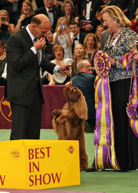 show winner list of best in show winners of the westminster kennel club show