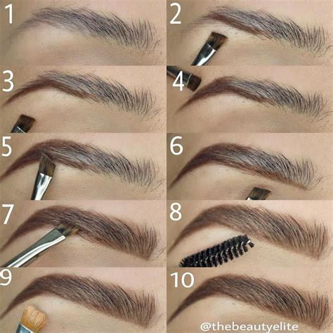 how to color eyebrows best 25 eyebrow makeup tips ideas on