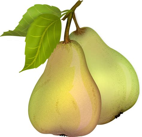 12 best images about pear pear 10 by roula33 on deviantart