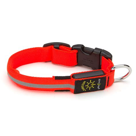 light up collar nite ize nite dawg small light up led collar orange s of kensington