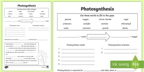 why are plants green worksheet 7 2 ks2 science processes and living things page 7
