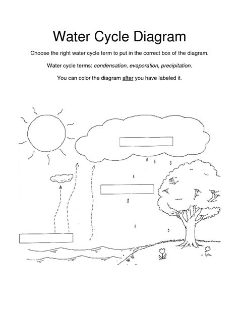 Water Cycle Worksheet by Water Cycle For Coloring Page Coloring Home