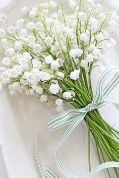 significato dei fiori mughetto il linguaggio dei fiori ed il loro significato infoperte