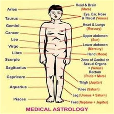 services astrology vedic science