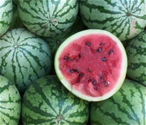 history of watermelon nutrition and health benefits from watermelons