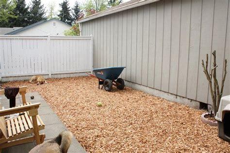 building a dog run in backyard best 25 dog run yard ideas on pinterest