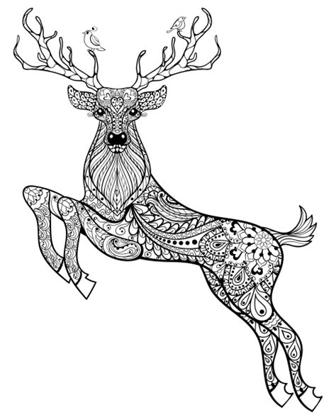winter deer coloring page christmas coloring anti stress therapy 2 holidays