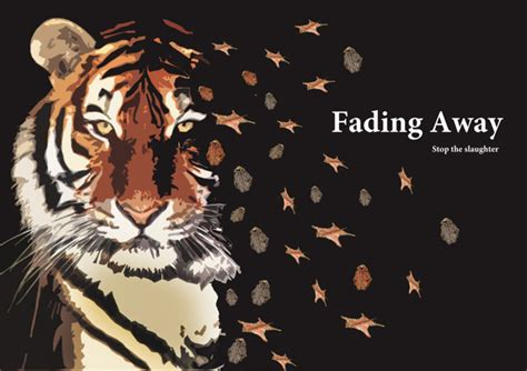 Tempret Fadeaway | the bengal tiger disappearingthroughtime