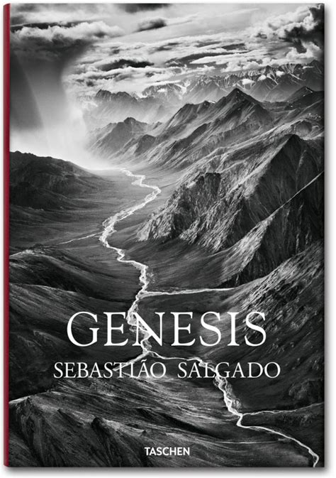 cover fo salgado genesis trade gb 1307081418 id 618549 jpg