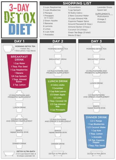 Detox Diets Weight Loss 3 Day by 3 Day All Liquid Detox Diet For Rapid Weight Loss