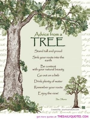 family tree quotes or poems. quotesgram