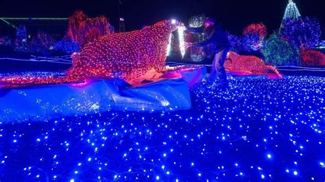 zoo lights tacoma can you find them zoolights shuffles its lighted displays