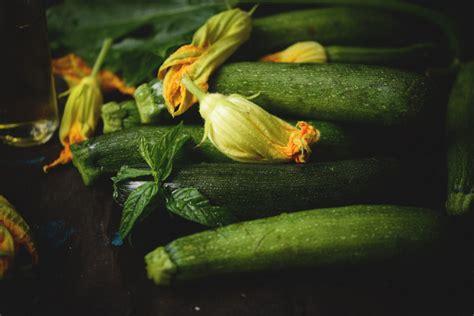 fiori di zucchine fritte zucchine 5 cose buonissime da fare dissapore