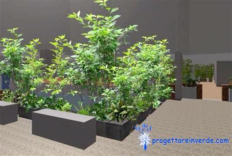 piante da cortile cortile condominio piante ornamentali