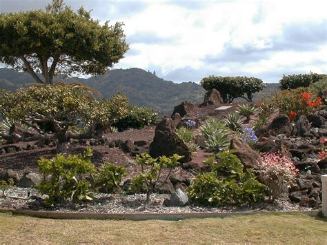 Landscape Supply Oahu Halawa Xeriscape Garden Board Of Water Supply
