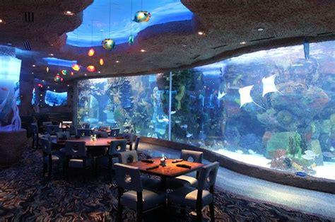 design aquarium restaurant aquarium restaurant nashville tn
